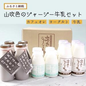 山吹色のジャージー牛乳 お試しセット【熊本県 南小国町】