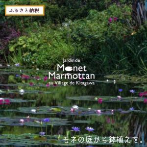 「モネの庭」から季節の寄せ鉢【高知県 北川村】