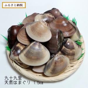九十九里産 天然はまぐり1.5kg【千葉県 白子町】