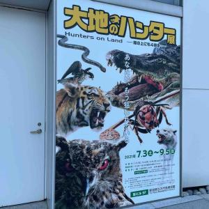 大地のハンター展(新潟万代島美術館)に行ってきた