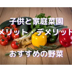 【子供と家庭菜園】おすすめの野菜やメリット・デメリット