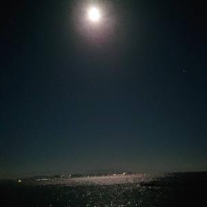 ■■お月様■■