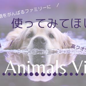【おうち英語】【バイリンガル育児】使ってみてほしい!3D animals view