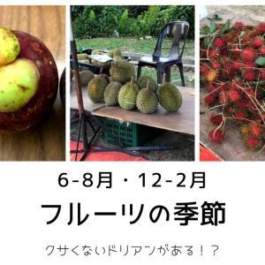 【マレーシア】6-8月はフルーツの季節!〇〇なドリアンはクサくない!?