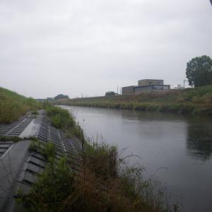 新河岸川放水路 カクシン 雨の日は橋の下