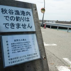 秋谷漁港が釣り禁止に?