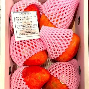 「沖縄マンゴー祭り」