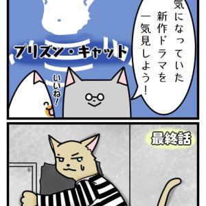 第百八十四話 「ドラマ鑑賞」