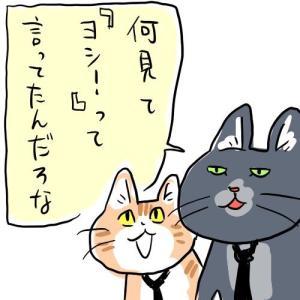 【悲報】現場猫さん、ガチの工事現場でも普通に使われてしまう