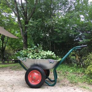 庭掃除で大活躍!重い荷物でも楽々!安定の2輪車