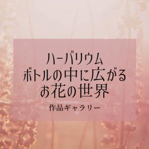 【作品ギャラリー】ハーバリウム、ボトルの中に広がるお花の世界