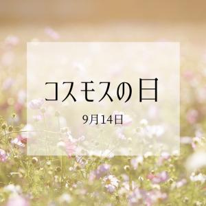 9月14日は『コスモスの日』お互いの存在に感謝する日