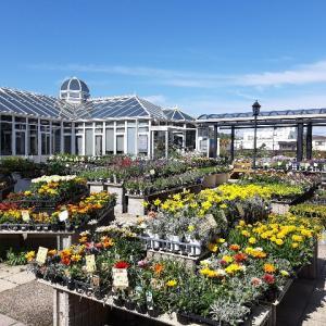 【宝塚の子連れオススメスポット】あいあいパークは英国風建物・常設モデルガーデン・山本新池公園の庭園や芝生が魅力的!