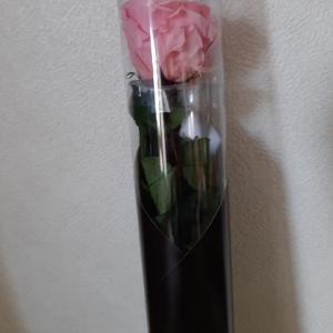 結婚記念日に旦那からお花をもらったけど、他に好きな人ができてしまったという話。