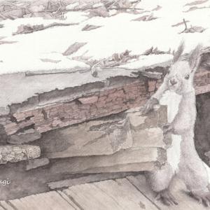 鳥沼公園 エゾリス 絵画教室課題 #008