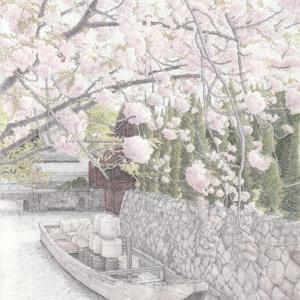 京都 八重桜と高瀬川 絵画教室課題 #009
