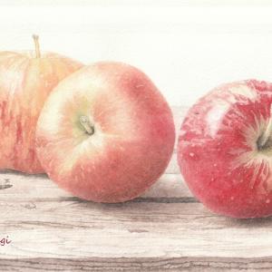 3つのリンゴ 絵画教室課題#012
