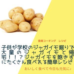 子供が学校のジャガイモ掘りで大量のジャガイモと帰宅!!?ジャガイモを飽きずにたくさん食べれる簡単レシピ