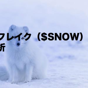 スノーフレイク($SNOW)株価分析 2022.1Q決算 ビックデータを扱うクラウドDWHのリーディングカンパニー