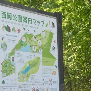 2021.6.13 西岡公園