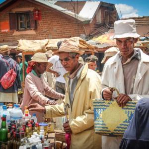 マダガスカルの人口構成と将来の見通し。年齢構成や学歴構成の変化を確認する