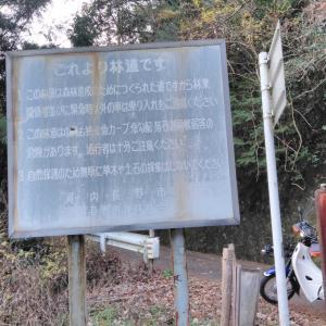 林道流谷線と共に歩む林道たち (。・ω・)ノ☆☆ヽ(・ω・。)