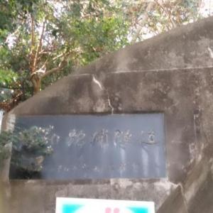 『和歌浦隧道』に愛を込めて ε=ε=(o・・)oブ~ン 【■】