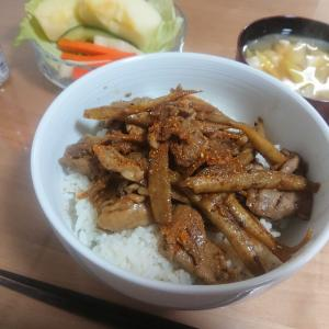 昨日の夜ごはん。〜丼16:豚ゴボウ丼