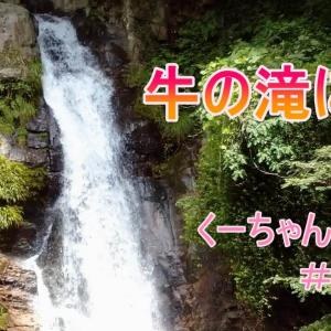 豊川市「牛の滝」
