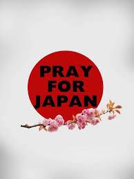 実のところ日本を半分諦めてる部分あったが、これがダメ押しになるかも