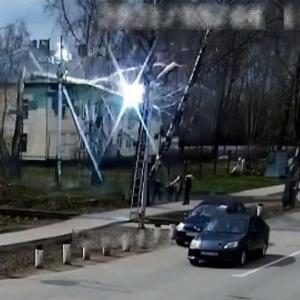 [動画0:27]強風による倒木・・・、電線を切断して歩道に落下・・・
