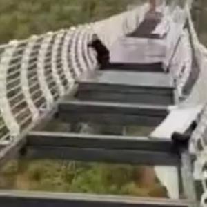 [動画0:38]強風で吊り橋の床が落下、観光客が取り残される