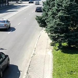 [動画0:17] 無謀な道路横断をする女性、撥ね飛ばされる