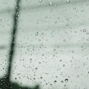 太陽光:出張3日目は雨の中の草刈り