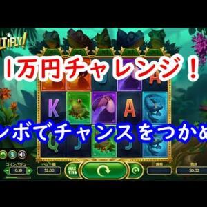 【オンラインカジノ】MULTIFLY(マルチフライ)【スロット】
