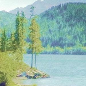 自作の色鉛筆画像