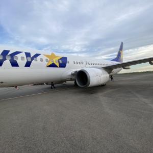 価格もお得で定時運行確実な航空会社スカイマークの搭乗レビューです