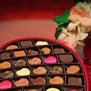 【トロピコ6】ミッション4「チョコレート工場」攻略と感想 農園の場所に悩む