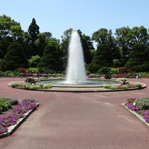 植物園が再開した!