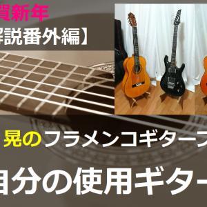 自分の使用ギター【機材解説番外編】