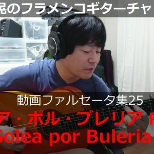 ソレア・ポル・ブレリアPart3(Solea por Buleria3)【YouTubeファルセータ動画25】
