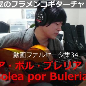 ソレア・ポル・ブレリアPart4【YouTubeファルセータ動画34】