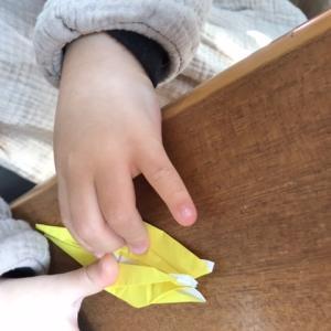 【4歳〜8歳】鶴は何歳から折れる?折り紙で知育。