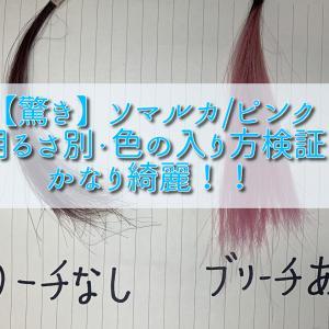 【驚き】ソマルカ/ピンクの明るさ別・色の入り方検証 かなり綺麗!!