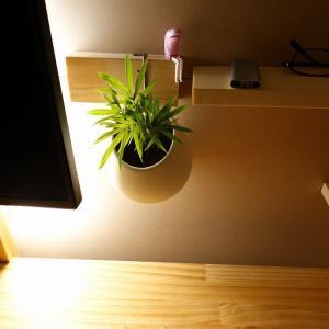 書斎DIY(観葉植物追加)