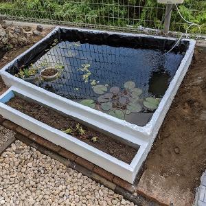 庭に池をつくる(⑤池周りの仕上げ その2)