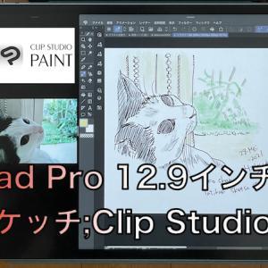 新iPadPro 12.9インチでスケッチ: Clip Studio
