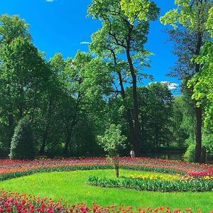 サンクトペテルブルクの夏。緑溢れる島、エラーギン島を散策してみよう。