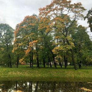 サンクトペテルブルクの秋。紅葉が始まりました。