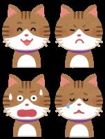 猫の笑顔見たことある?猫は表情で気持ちを伝えることができるの?